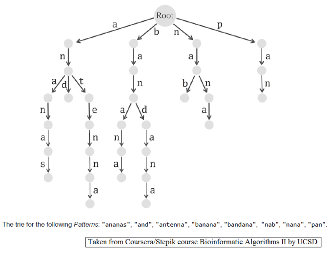 Some BioInformatics: Suffix Tree Construction and the