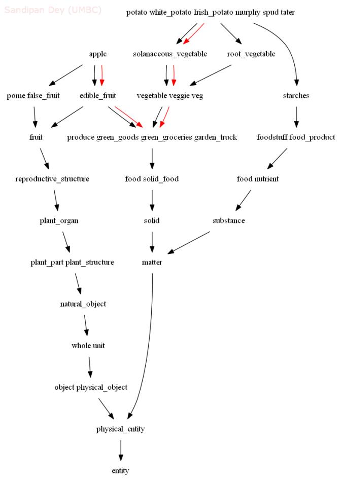 Natural Language Processing: Measuring Semantic Relatedness