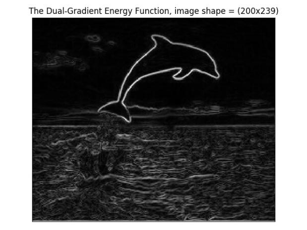 energy_000dolphin.jpg