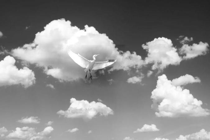 pe_cloud