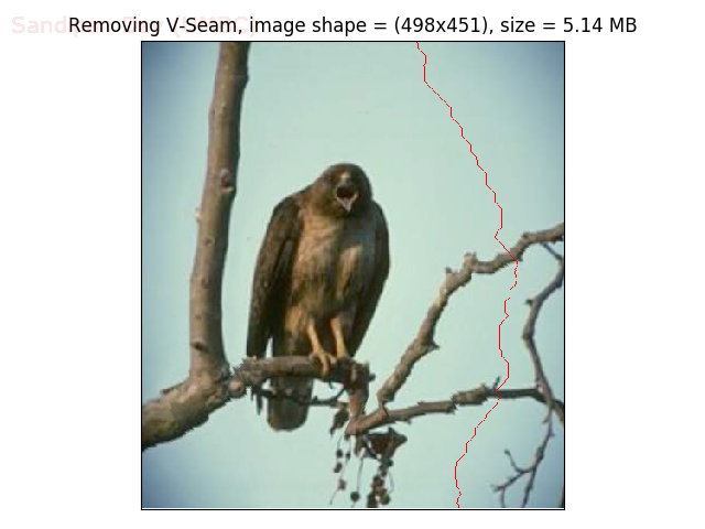 seam_299_vbird2