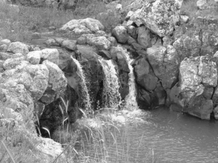 waterfall_gray