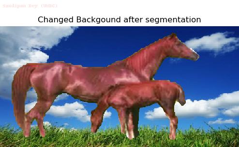 bg_1.0000horses.png