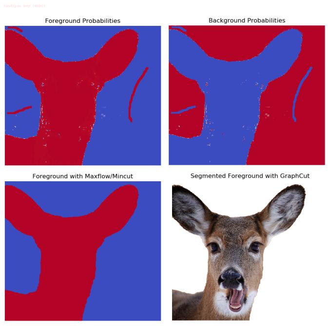 maxflow_deer